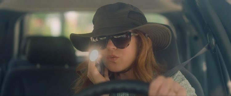 Sunglasses Isla Fisher in Keeping up with the Joneses (2016)