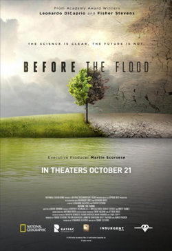 Before the Flood products